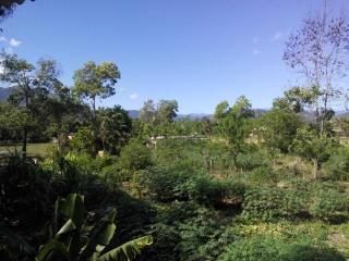 Naturaleza, Jarabacoa