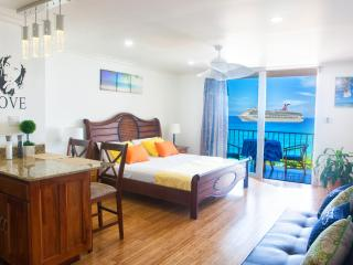 Ocean Front Modern Luxury Condo Montego Bay Club