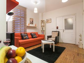 Nice 2 bdr flat in center of Taksim, Istanbul