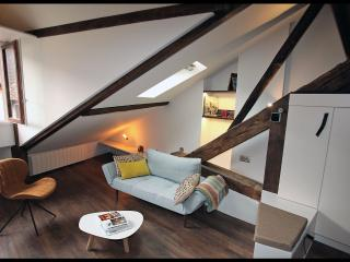 Lovely loft in the old town, Annecy