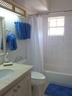 One of the bathrooms.