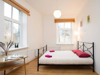 Delightful 1 bedroom apartment, Riga