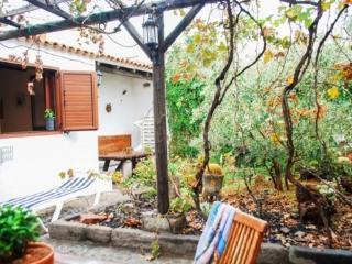 House in Agüimes, Gran Canarias 102579