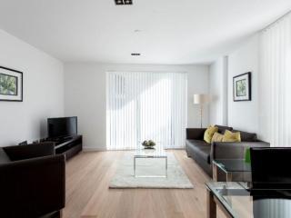 Luxury Avant-Garde Studio apartment in Hackney with WiFi, balkon & lift., London