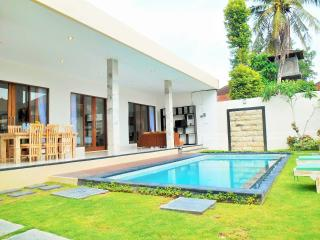 River Side Villa Providence with Rice field View, Canggu