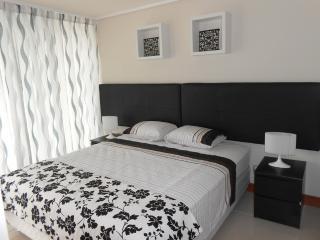 Modern One Bedroom Apartment in Las Condes, Santiago