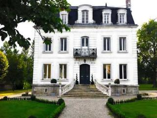Large Luxury villa in the heart of the Loire with heated pool and private garden