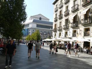 Spacious Flat - Puerta del Sol