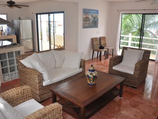 Villa Flamingo !   Beautiful Ocean views, Cozumel