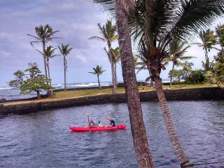 Oceanfront Home: Snorkel, Kayak, Swim from yard, Pahoa