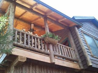 Cozy Cabin with Old World Charm!!!