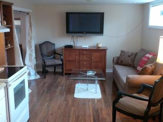Cozy and clean 2 bedroom furnished apt/pets/parkn, Toronto