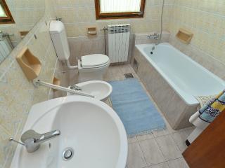 Apartment 1564