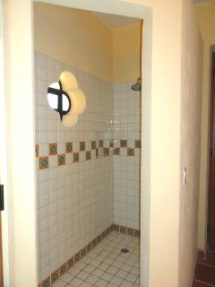 Nice stand up/walk-in shower.