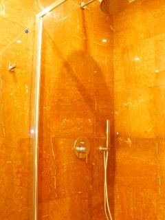 Shower (bathroom 2)