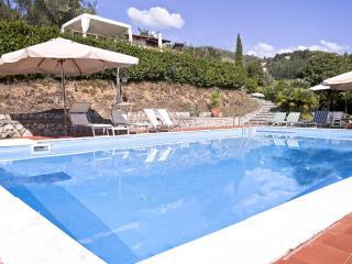 I Limoni, apartment in amazing villa with Pool, Camaiore
