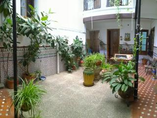 Four bedroom flat - Courtyard House! (Casa-Patio), Córdoba
