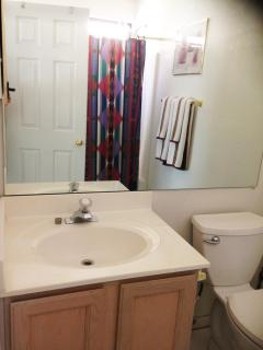 Master bedroom bath with shower/tub with nice massage shower head