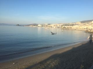 whole fLat, cosy,peaceful , nature,  pool&seaview