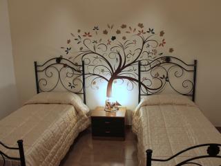 La camera sull'albero.