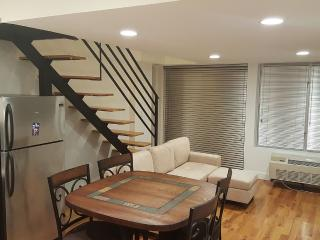 Luxury Duplex with rooftop access near JFK/LGA