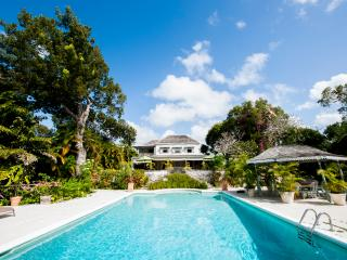 Holders House - 6 bedrooms sleeps 15 West Coast St. James