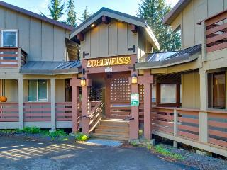 Comfortable, cabin-style condo, near skiing & attractions - dogs welcome!