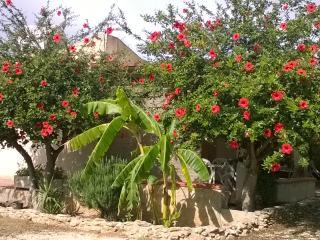 Villa con ampio giardino C/da Finocchio Menfi (Ag)