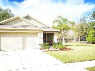Close to Disney/Legoland/Busch Gardens/Beaches!!!!, Lakeland