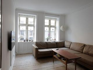 Lovely and well predisposed apartment near city center, Copenhague