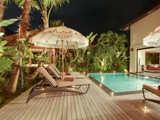 Villa Elok Seminyak - 3 Bedrooms & 2 POOLS!!