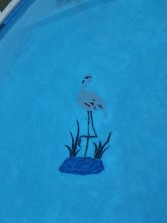 the Flamingo Bar mascott in the pool