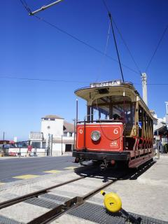 Take the tram from the village to Sintra, a 100 year old voyage!