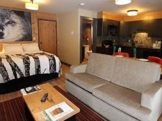 Banff Rocky Mountain Resort 1 bedroom 1 bathroom studio