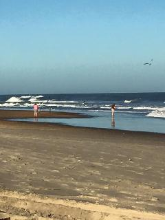 The beach in December, 2015...beautiful!