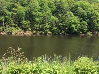 Beautiful Home on The Esopus Creek