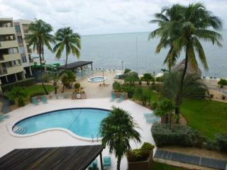THE PALMS 407, Islamorada