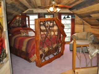 Hoot Owl Cabin in the Heart of Apple Country, Hendersonville