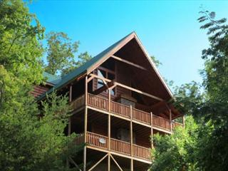 Above it All, Steam Shower, Arcade, Dogs OK, Two Hot Tubs, Wheelchair Ramp, Gatlinburg