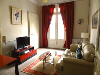 Spacious Art Nouveau Apartment, Beziers