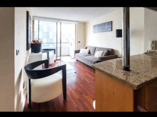 Sleek 2 Bedroom Apartment in Providencia, Santiago