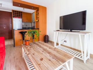 Cozy 2 Bedroom Apartment Near Araucano Park, Santiago