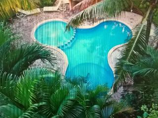 Beutiful 2 Bedroom, with pool downtonw, Playa del Carmen