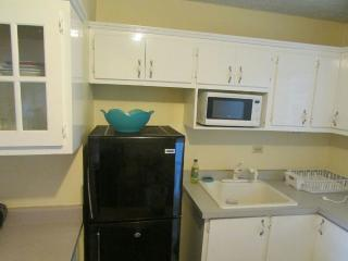 Comfy 1BR in Oakland Apts., Kingston