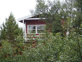 Prime location - The Red Cottage + separate cabin, Laugarvatn