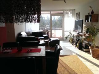 Vacation Apartment in Cologne - 926 sqft, free coffee, tea, and mineral water, parking place. (# 9318), Frechen