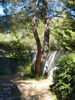 le jardin cote studio