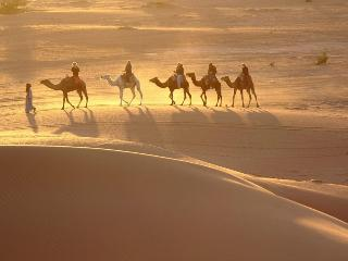Camls Trek Morocco, M'Hamid
