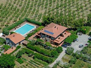 Casa Rondini,organic farm, Montegabbione