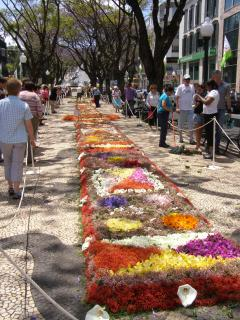 Flower festival in full swing